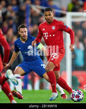 Champions League, Chelsea-Munich, London Feb 25, 2020. Serge GNABRY, FCB 22  compete for the ball, tackling, duel, header, zweikampf, action, fight against Cesar AZPILICUETA,  Chelsea 28  FC CHELSEA - FC BAYERN MUNICH  0-3 UEFA Football Champions League , London, February 25, 2020,  Season 2019/2020, round of last sixteen, FCB, Bavaria, München © Peter Schatz / Alamy Live News Stock Photo