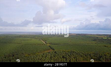 Aerial photograph of Rendlesham forest in suffolk - Stock Photo