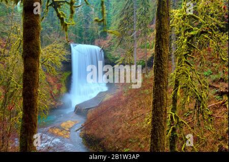 One of several waterfalls at Silverfalls State park surrounded by autumn colored forest. - Stock Photo