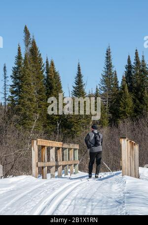 Nordic skiër pausing on a bridge in a snowy forest - Stock Photo