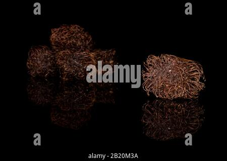 Group of five whole old brown rambutan isolated on black glass - Stock Photo