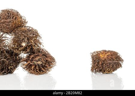 Group of six whole old brown rambutan isolated on white background - Stock Photo