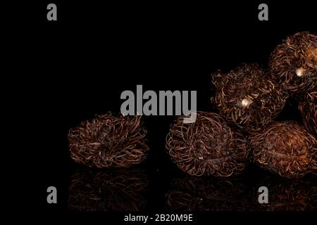Group of six whole old brown rambutan isolated on black glass - Stock Photo