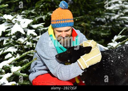 Man wears knitted hat, scarf and gloves with black dog. Macho with beard and mustache hugs dog. Guy with smiling face with firtrees covered with snow on background. Winter walks concept. - Stock Photo