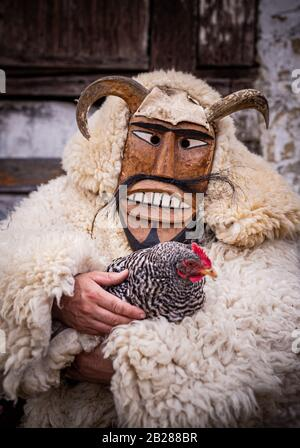 Portrait of a man dressed in 'buso' costume wearing a horned mask holding a chicken during the annual buso festivities in Mohacs, Southern Hungary - Stock Photo