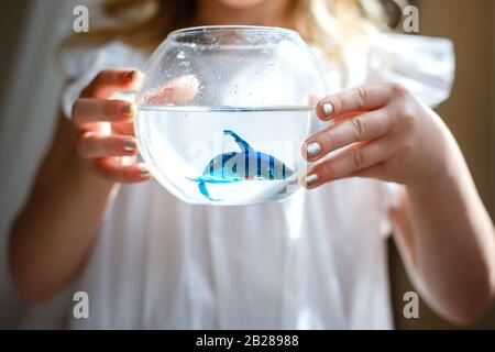 Baby girl in white dress holding a aquarium with blue fish. The concept of care for Pets. Gift. Selective focus - Stock Photo