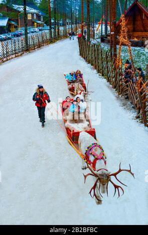 Rovaniemi, Finland, Tourists on reindeer-drawn sledges in the Santa Claus Village and Park