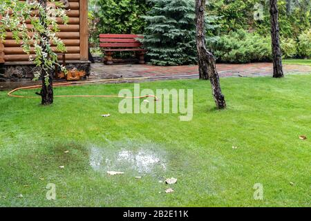 Garden bushes, tree and green grass lawn covered with water due to snow melting thaw and flash high water at spring. Natural disaster deluge flooded