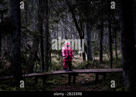 young girl standing on a boardwalk in a forest in Sweden - Stock Photo