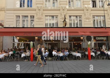 Zum Schwarzen Kameel, Bognergasse, Wien, Oesterreich - Stock Photo
