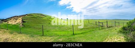 Wide panorama of green pastures with rolling hills and agricultural fence under beautiful blue sky - Stock Photo