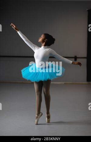 Mixed race female ballerina wearing white tricot and blue tutu - Stock Photo