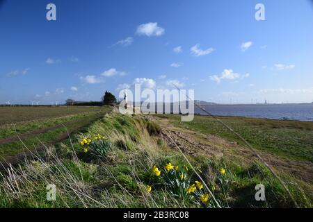 The River Mersey Estuary North Shore at the Hale Conservation Area - Stock Photo