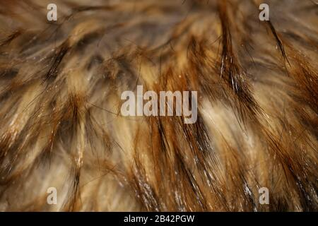Artificial brown jacket hairs macro background stock photography high quality - Stock Photo