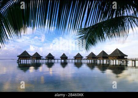 Rangiroa Resort - Traumstrand - Palmenstrand - Stock Photo