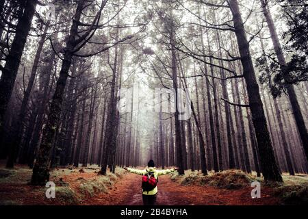 Happy people adventure trekking hiking concept enjoying nature and beautiful high trees forest wood - wanderlust and alternative vacation with beautiful natural background - Stock Photo