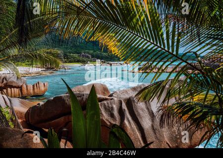 Tropical secluded beach framed by nature foliage on the trekking tour through the jungle to hidden Marron beach, La Digue, Seychelles. - Stock Photo