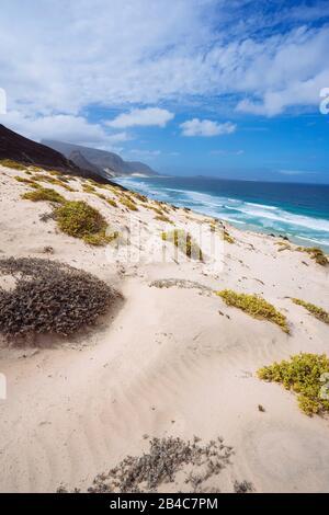 Cape Verde. Desolate landscape of sand dunes and desert plants of atlantic coastline with ocean waves. Baia Das Gatas, North of Calhau, Sao Vicente Island. - Stock Photo