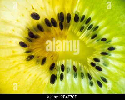 half slices green and yellow kiwi back lit abstract texture