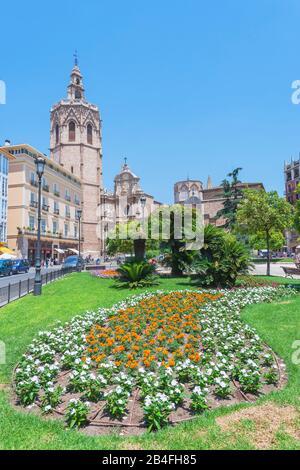 Plaza de la Reina, Valencia, Comunidad Autonoma de Valencia, Spain - Stock Photo