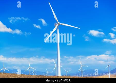 Windmills, Tarifa, Costa de La Luz, Cadiz Province, Andalusia, Spain, Europe - Stock Photo