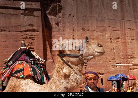 Jordan, Bedouin with camel in the rock city Petra - Stock Photo
