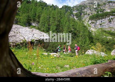 Hike to Wurzeralm, Totes Gebirge, Austria - Stock Photo