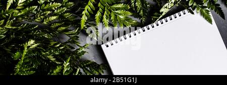 Desktop mockup with blank of paper and green leaves. Empty space, flat lay, top view, copy space. Horizontal banner for web design - Stock Photo