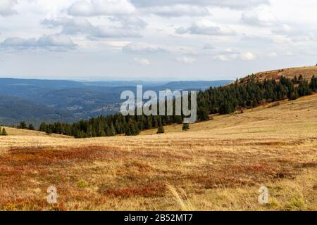 Landscape on the summit of the Feldberg, Black Forest, Germany