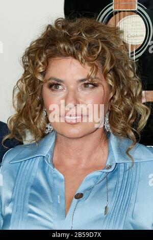 Hollywood, USA. 07th Mar, 2020. Shania Twain walking the red carpet at the Premiere Of Lionsgate's 'I Still Believe' held at ArcLight Hollywood on March 7, 2020 in Hollywood, California USA (Photo by Parisa Afsahi/Sipa USA) Credit: Sipa USA/Alamy Live News - Stock Photo