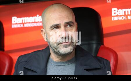firo: 07.03.2020, Fuvuball, 2019/2020, 1.Bundesliga: Bayer Leverkusen - Eintracht Frankfurt 4: 0 Portrait, Peter Bosz, | usage worldwide - Stock Photo