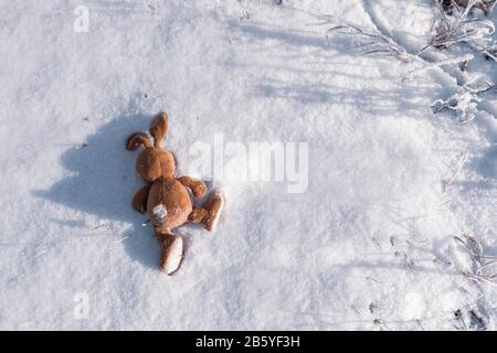 an abandoned or lost ivy Bunny toy lies on the snow. Copyspace. Children lose and throw toys. Allegory, separation, loneliness, and death. Emotions. C