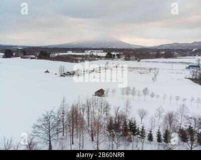 Winter morning landscape photo of snow covered fields and bare trees with the majestic volcanic mountains being lit up by the morning sun in the back - Stock Photo