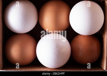 Raw chicken eggs organic food in paper box, high protein for health