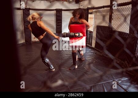 Two Female Mixed Martial Arts Fighters Kick Boxing Training In Gym - Stock Photo