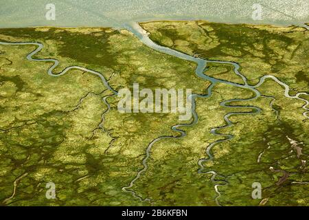 Ostheller- landscape and salt marshes in the Wadden Sea prils Norderney island as part of the East Frisian Islands, aerial view, 27.08.2014, Germany, - Stock Photo