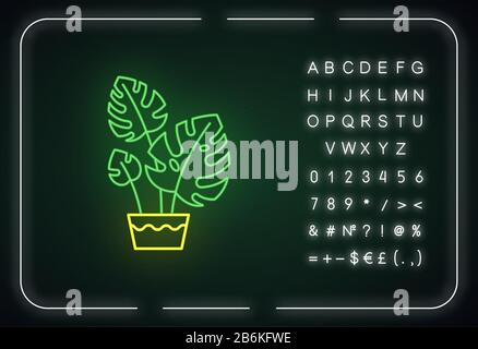 Monstera deliciosa neon light icon. Swiss cheese plant. Philodendron. Indoor tropical plant. Outer glowing effect. Sign with alphabet, numbers and Stock Photo