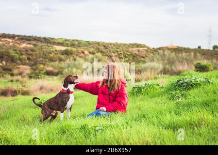 Young woman sitting with American Staffordshire terrier - Stock Photo