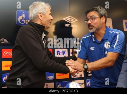 Gelsenkirchen, Deutschland. 26th Oct, 2019. firo: 26.10.2019, football, soccer: 1.Bundesliga, season 2019/2020, FC Schalke 04 - BVB Borussia Dortmund 0: 0 Lucien Favre and David Wagner, welcoming press conference | usage worldwide Credit: dpa/Alamy Live News Stock Photo