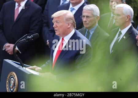 Washington, USA. 14th Mar, 2020. President Donald Trump speaks during a news conference as he declares national emergency in response to coronavirus at the Rose Garden of the White House on March 13, 2020 in Washington, DC.(Photo by Oliver Contreras/SIPA USA) Credit: Sipa USA/Alamy Live News - Stock Photo