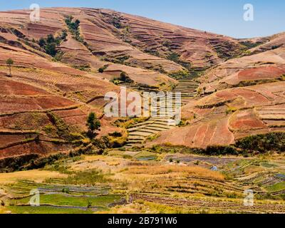 Rolling hills with terraced rice paddy fields in the highlands of Madagascar