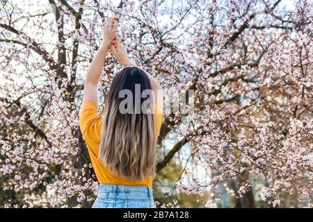 back view of young woman enjoying beginning of spring against bloomy fruit tree with pink flowers in park - Stock Photo