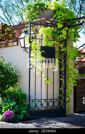 Lovely landscaped entrance to courtyard surrounded by Spanish brick and stucco wall with iron gate loaded with climbing ivy - Stock Photo