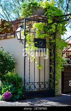 Romantically designed courtyard entry of Schmooze, Bar & Breakfast, surrounded by wall with iron gate and sign loaded with climbing Ivy Scottsdale, AZ - Stock Photo