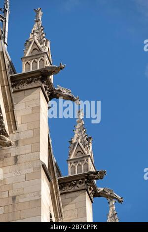 Close up of the gargoyles at the Notre Dame cathedral in Paris, France, Europe - Stock Photo