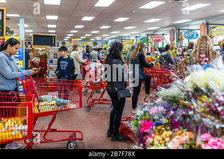 Reston, USA - March 13, 2020: Long lines queue in Trader Joe's store with people by shopping cart with grocery products, paying at cashier registers i - Stock Photo