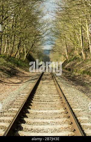 Railway lines receding into the distance on a sunny day with bare trees lining the track, Summerseat, East Lancashire Railway, Lancashire, England - Stock Photo