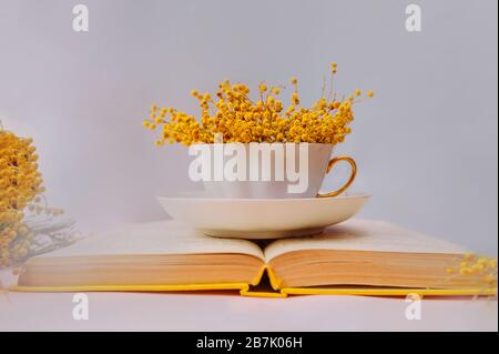 A mug filled with fragrant pink Mimosa flowers on an open book with old leaves and a yellow cover on a lilac soft background. Love of books and readin