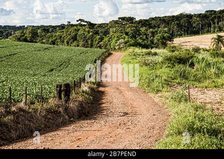 Cunhataí Santa Catarina fonte: l450v.alamy.com