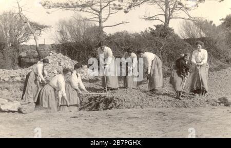 8-VBW1427 WW1 era postcard of group of women land girls, doing war work - building a farm track, circa 1916, U.K. - Stock Photo